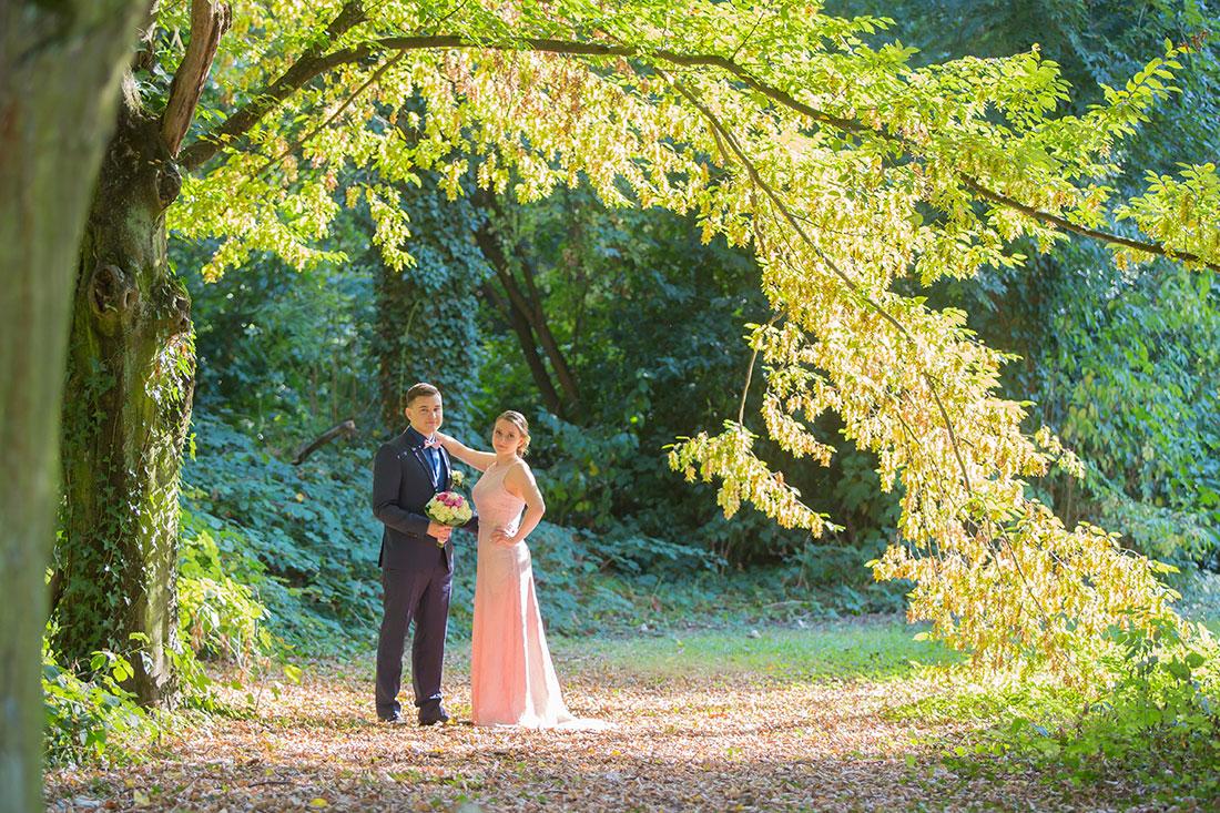 Hochzeit-in-Burg-altes-Schloss-Standesamt-heiraten-in-Dillingen-Brautpaar-Herbst-Baum-Bogen-Sergej-Metzger-Hochzeitsvideo-in-Hannover-Fotograf-Hildesheim