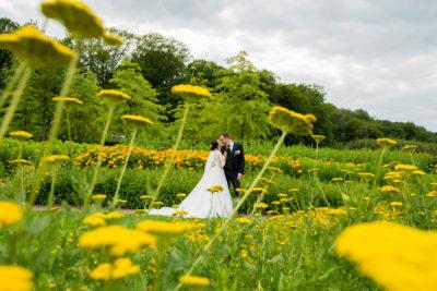 Hochzeit-in-Hemer-Sauerlandpark-Hemer-Brautpaar-Sergej-Metzger-Hochzeitsvideo-in-Hannover-Fotograf-Hildesheim-im-Feld-Frühling-Löhwenzahn-grün-gelb-Romantisch